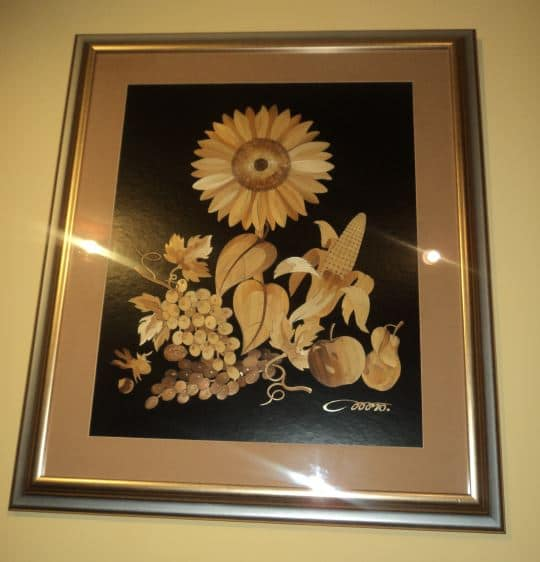 Jasmin Mesaric Croatia sunflower