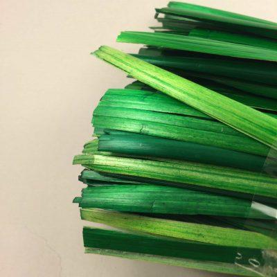 "TSS MIW ""Fantasy Dark Green "" 2 , ©   The Straw Shop (TSS)"