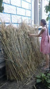 Lyudmila Kushnir, Ukraine straw, straw master, applique straw, The Straw Shop